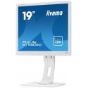 "monitor IIYAMA ProLite B1980SD-W1 19"" TN LED 5ms"