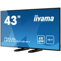 """monitor IIYAMA ProLite LE4340UHS-B1 43"""" AMVA3 4K"""